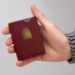 Intelligent Card Holder
