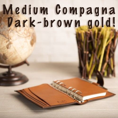 Restock Medium Compagna D.brown-Gold