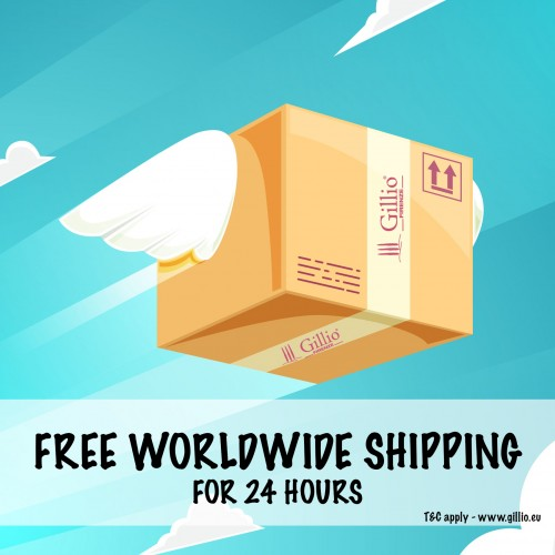 Free worldwide shipping for 24 hours!