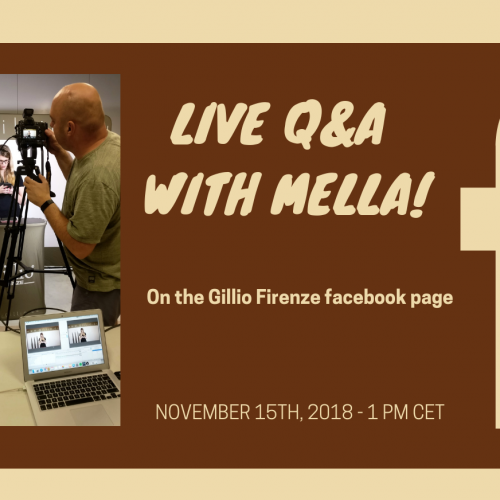 Facebook QA November 15th 1 PM CET